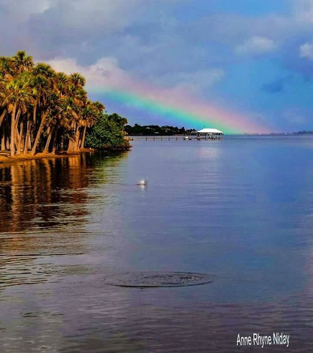 15. Anne Rhyne Niday captured this rainbow over the Indian River Lagoon