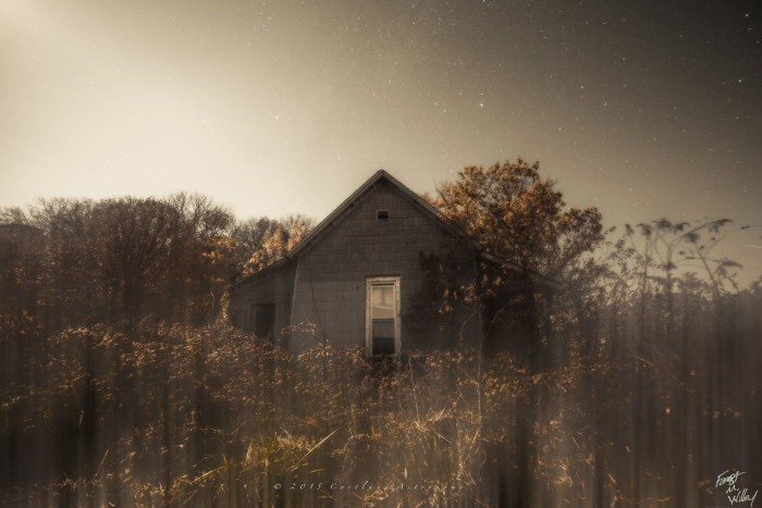 3. A hauntingly beautiful shot of an abandoned home in Jackson County.