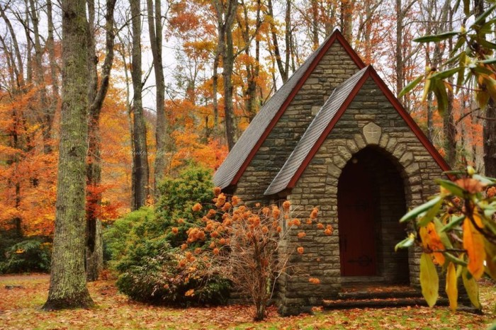 13. A quaint chapel nestled in the woods.