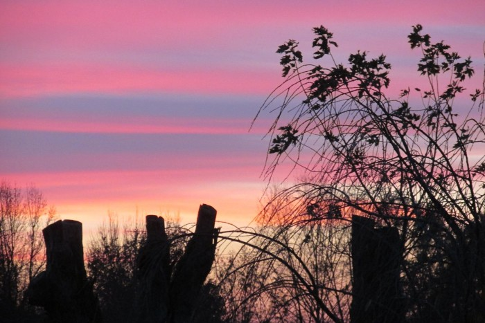 12. Barb Hollingsworth Williamson snagged a nice capture of the sunrise in Vermillion County! Don't you love when the sky looks like cotton candy?