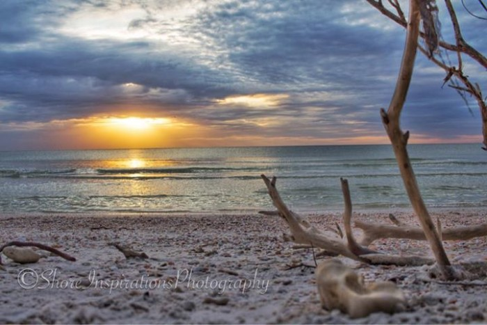 21. Kelly Lang sent us this romantic scene from Honeymoon Island