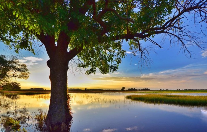 5. Jason Humbracht decided to share a breathtaking capture of a sunset in Brownsburg. Even when the sun goes down, this state is beautiful!