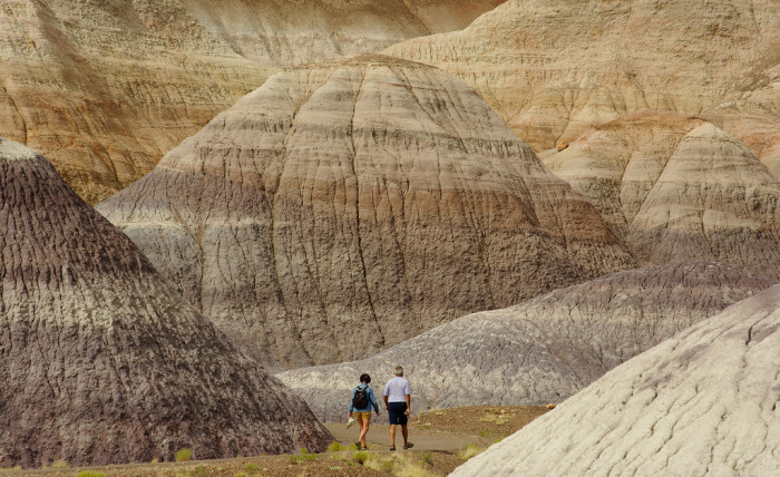 7. Petrified Forest National Park