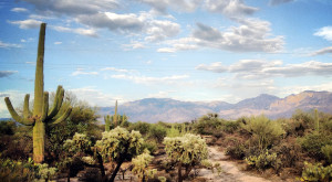 You Should Avoid These 8 Most Dangerous Spots In Arizona Nature