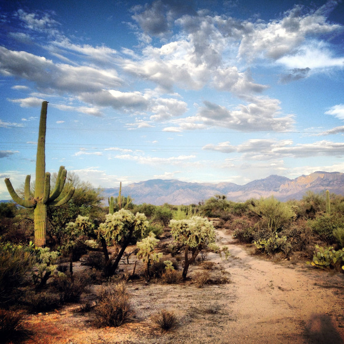 Best Places Take Pictures Arizona: Places In Arizona Nature That May Be Dangerous To Visit