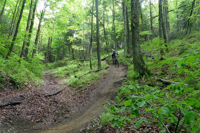 13.Mountain biking.