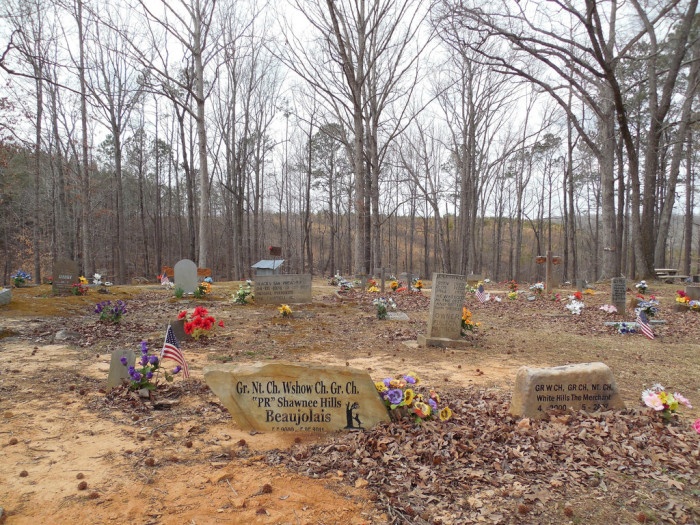 17. Coon Dog Cemetery