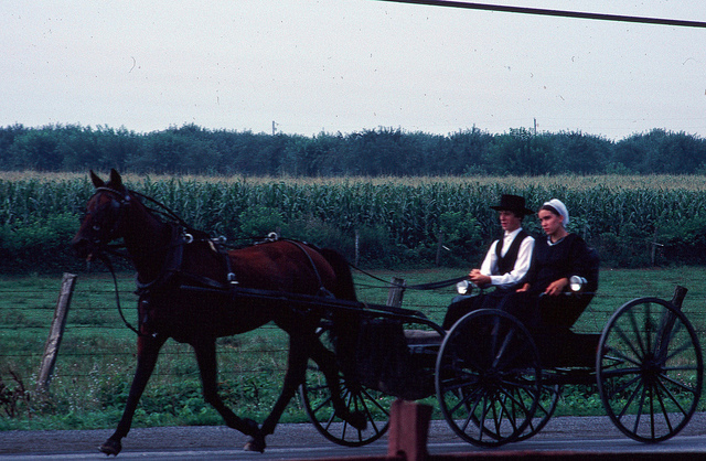 9. Pennsylvania is home to more Amish people than anywhere else in the world, who make our state a uniquely interesting place to live.