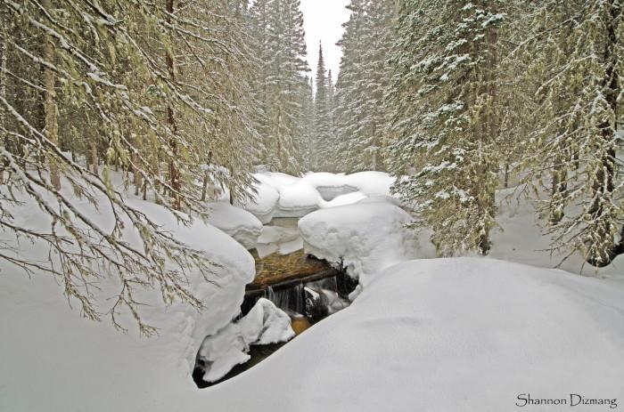 10. Snowshoeing around Indian Peaks Wilderness