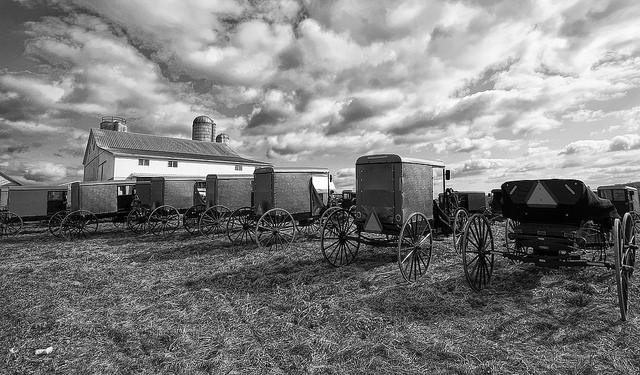 14. Amish country