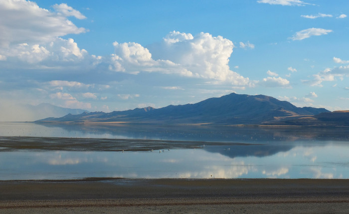 13. The smell of the Great Salt Lake.