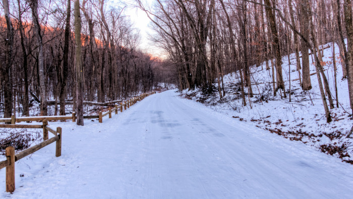 14) That perfect, snowy path through the woods