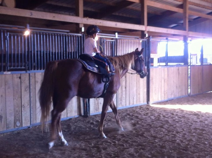 11.Learn to ride a horse.