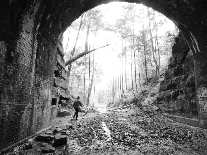 6. Moonville Tunnel in Vinton County