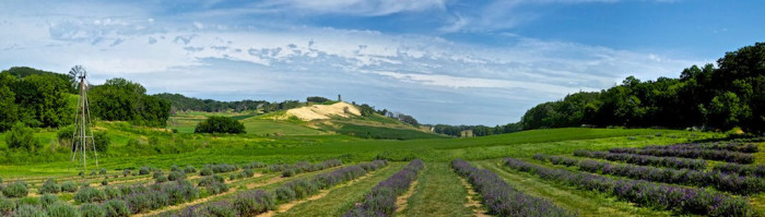 8. The Loess Hills Lavender Farm, Missouri Valley