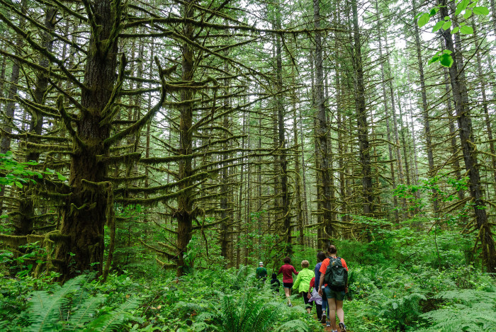 3. The most incredible hikes...