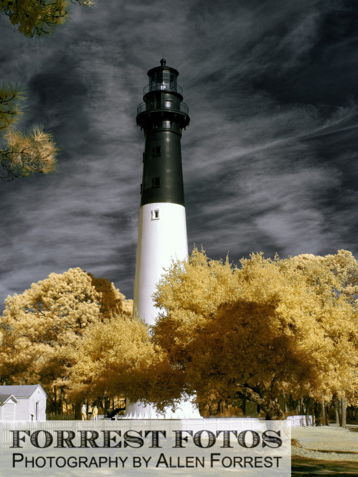 12. Our lovely lighthouses.