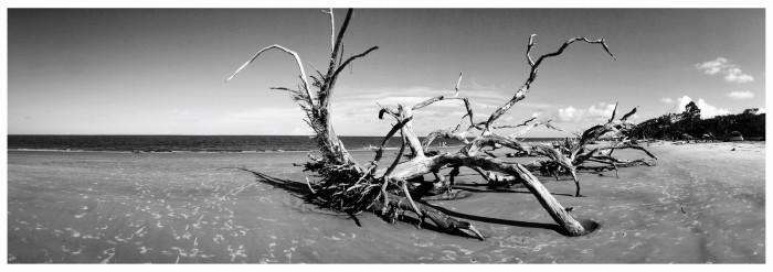 5. Jekyll Island