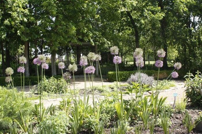 13. Gardens.