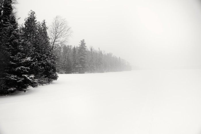 18. This snowy winter day showcases the changes in MN scenery from open space to snow covered forest.