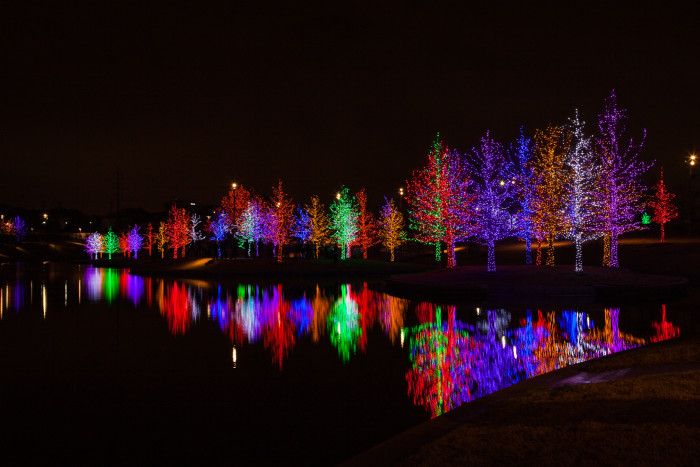 8) Vitruvian Lights - Magical Night of Lights (Addison)