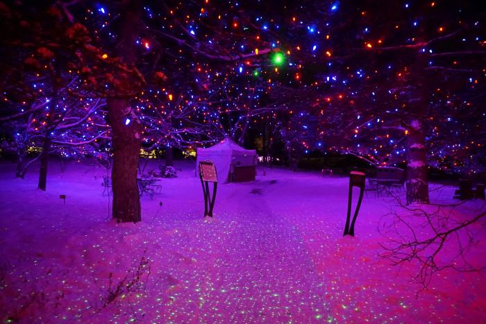 8. The Botanic Gardens look like this...