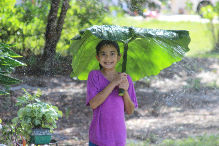 3. You never stress out about a little rain (or thunderstorm, or even most hurricanes).