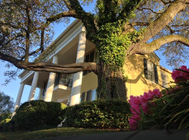1. Archie at the Anchuca Mansion, Vicksburg