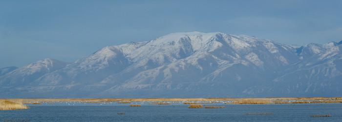 20. Bear River Migratory Bird Refuge