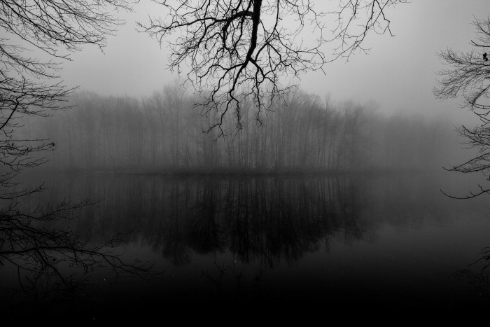 7. Blankets of fog on a dark day in Davidson's Mill Park, Middlesex County.