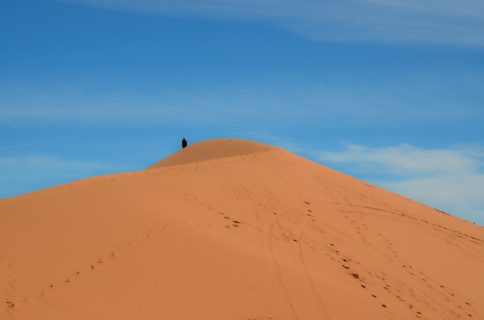 12. Coral Pink Sand Dunes State Park