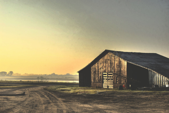 8. Do you live way out  in the country?