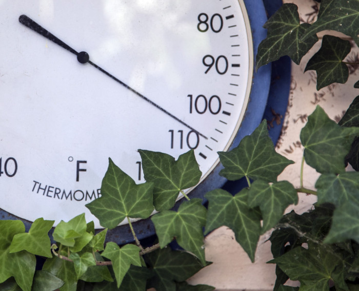 6. An outdoor thermometer to measure those hot days (and even the cold ones.)