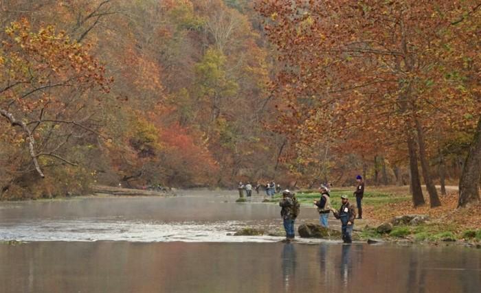 20. Fall Trout Fishing at Meramec Spring Park by William D. Barrett.