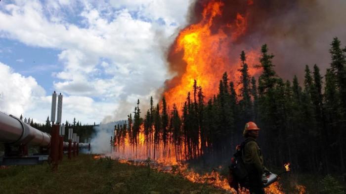 4) 2015 Alaska Sockeye Wildfire