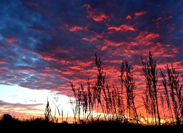 6. Nowhere else but Kansas can you find sunrises...