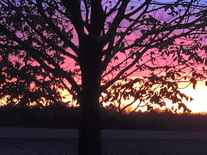"""21.Amy Laughlin submitted this photo and says, """"It doesn't get any better than this! I took this at sunset Saturday in Kearney MO;)""""."""