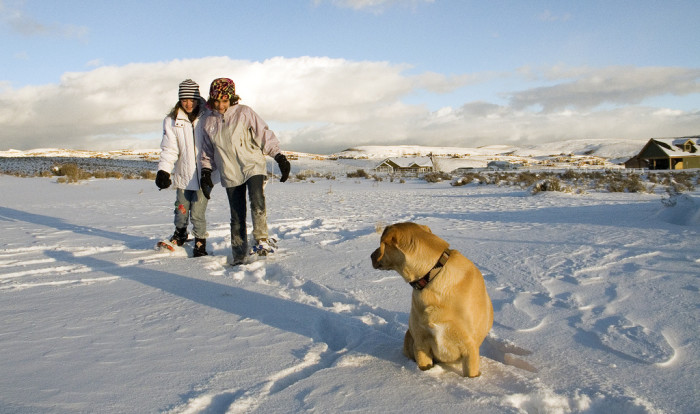 7. Watching your kids (and dogs!) romp in the snow.