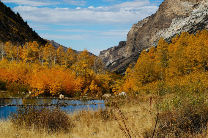 2. ...scenic canyons