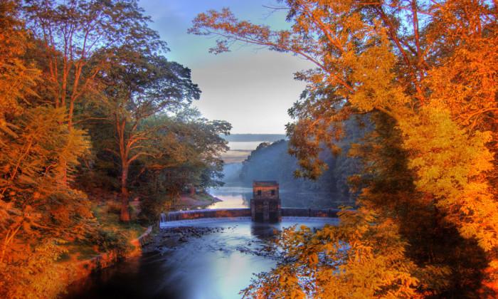 1. Fall foliage at Speedwell Lake.