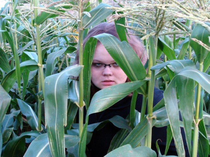 9. Are you all like children of the corn there?