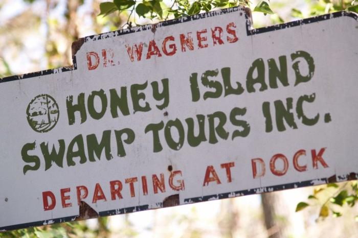 6. Honey Island Swamp Tour