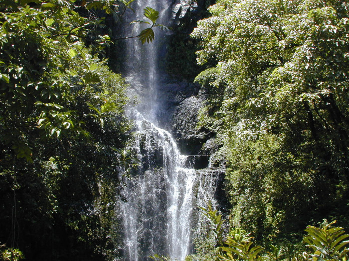 3) Instead of driving to Wailua Falls...
