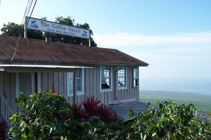 3) The Coffee Shack, Captain Cook