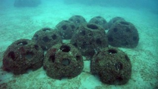 11. A company in Georgia will mix your ashes following your cremation with cement and drop it to the bottom of the ocean to form an artificial reef.