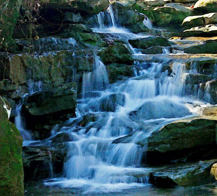 10. Moss Rock Preserve