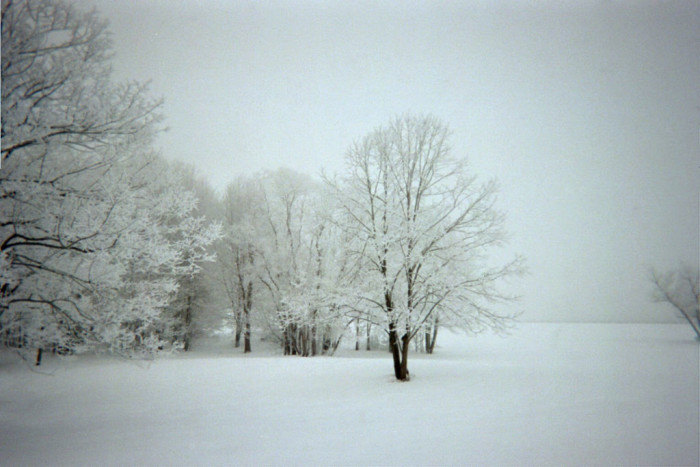 8. The snow makes for incredible pictures.
