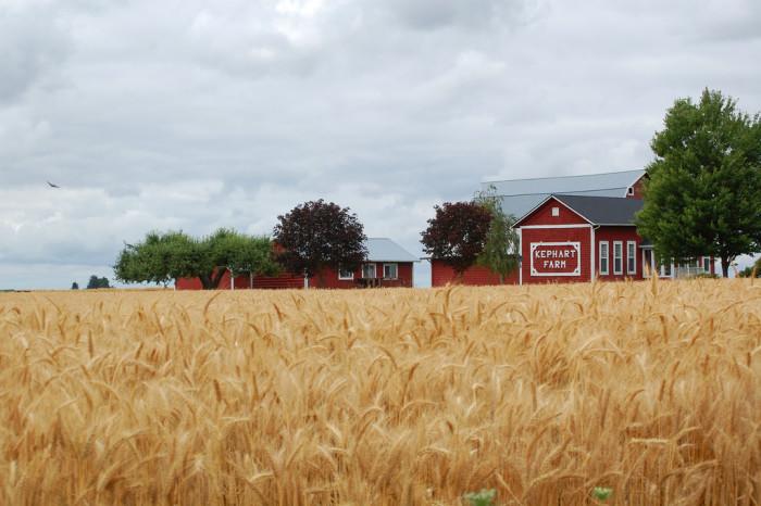 10. Kephart Farm