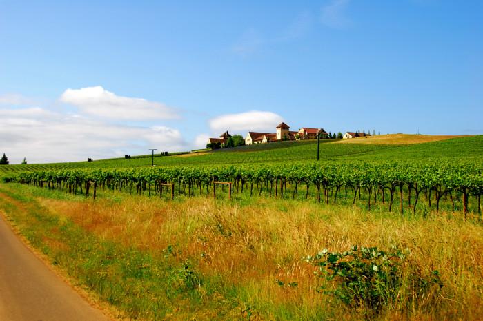 7. King Estate Winery