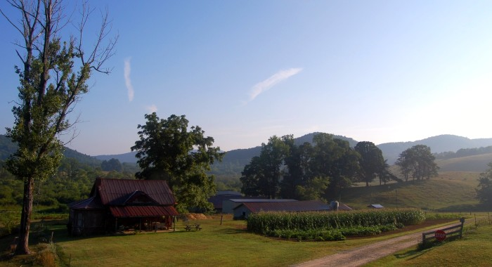 3. The countryside in Suches, GA
